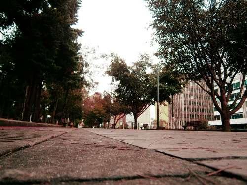 Street Park City