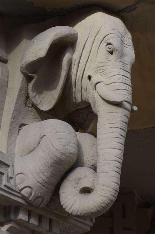 Stuttgart House Entrance Paul Street Elephant