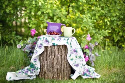 Summer Still-Life Garden Outdoors Tea Party