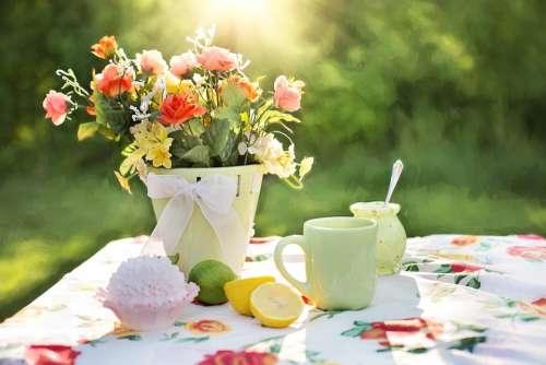 Summer Still-Life Garden Outdoors Flowers Dish