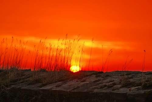 Sun Afterglow Morgenrot Sunrise Sunset