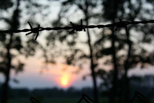 Sun Nature Barbed Wire Sunset Mood Dusk Rest