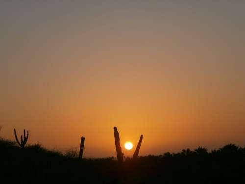 Sun Sunset Evening Sun