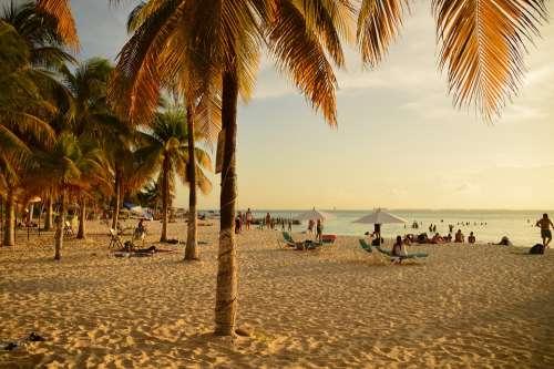 Sunset Beach Paradise Rest Enjoyment Landscape
