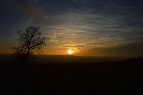 Sunset Sundown Landscape Tree Abendstimmung