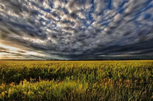Sunset Moody Pasture Storm Weather Cloud Scene