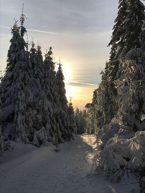 Sunset Snow Landscape Hiking Dusk Cold Winter