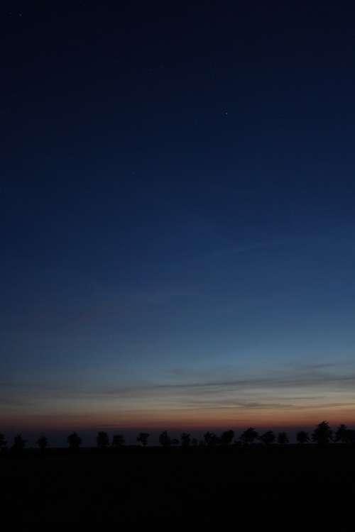 Sunset Star Trees Avenue Night Dark