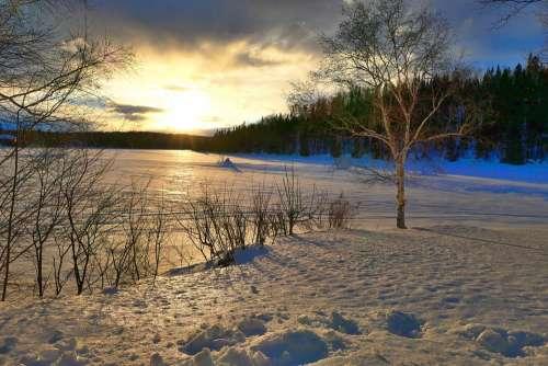 Sunset Nature Landscape Winter Cold Gel Trees