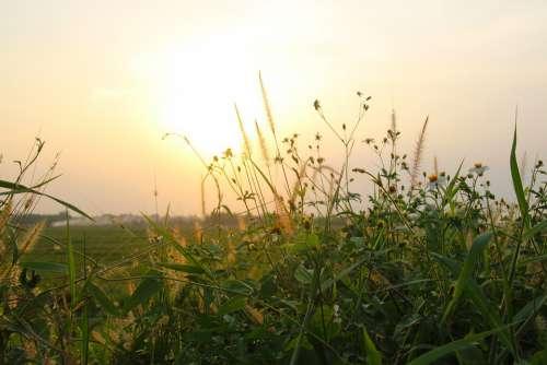 Sunset Sky Sunrise Landscape Sun Dawn Nature
