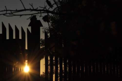 Sunset Evening The Sun Twilight Branches