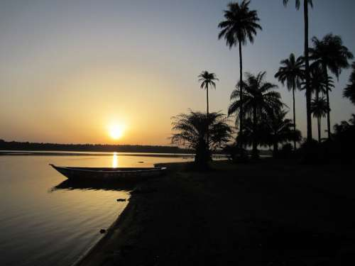 Sunset Guinea Africa Palm Trees
