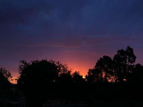 Sunset Dusk Tree Nature Landscape Night