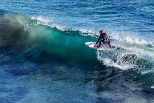 Surfing Surfer Surf Surfboard Water Sports Water