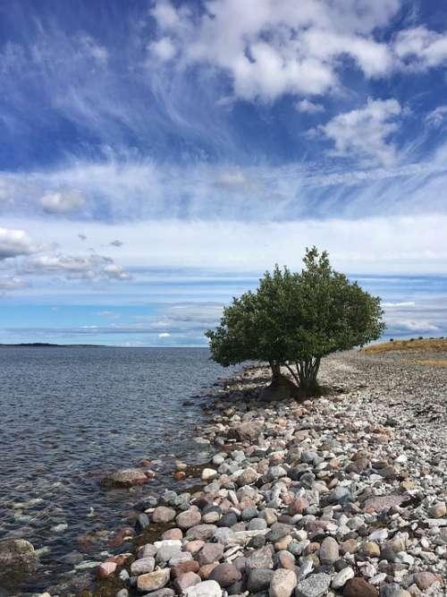 Sweden Gotland Blue Sky Clouds Landscape Summer