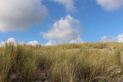 Sylt Dune Landscape Blue Sky Nature Clouds Grass