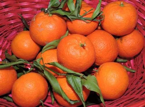 Tangerine Orange Fruit Basket Citrus Fruits Foods