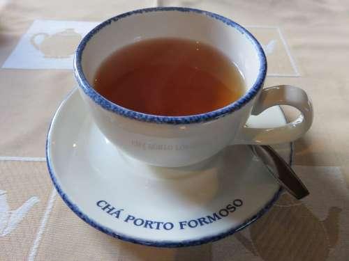 Tea Black Tea Cup Organic Beverage Hot Teacup
