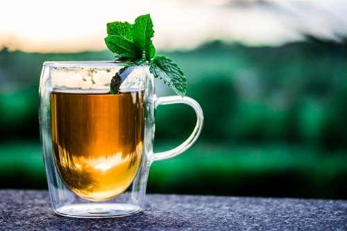 Teacup Cup Of Tea Peppermint Tea Tee Drink Hot
