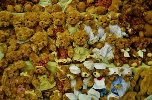 Teddy Bear Toy Cute Brown Animal Fluffy Child