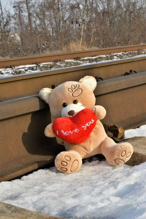 Teddy Bear Crying Stop Youth Suicide Sparkling Tear