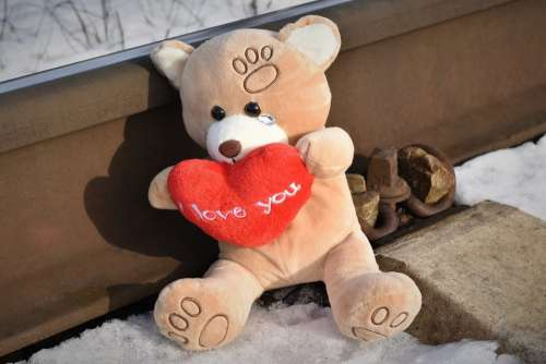 Teddy Bear Crying Stop Youth Suicide Snow Winter