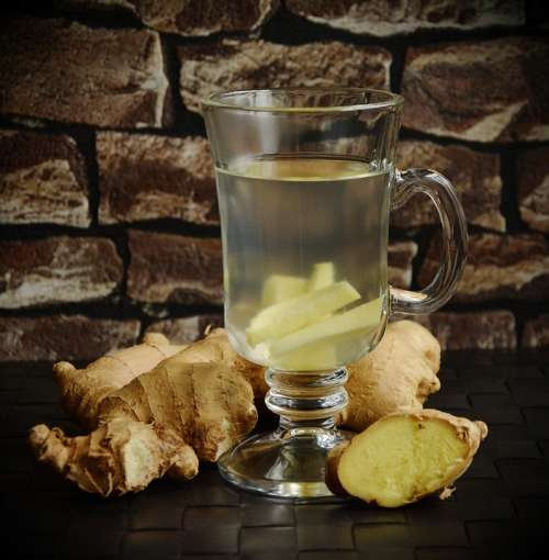 Tee Ginger Ginger Tea Ginger Root Health Healthy