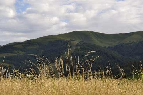 The Carpathians Meadow Grass Mountains Landscape