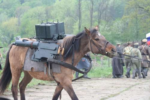 The Horse The War Weapon