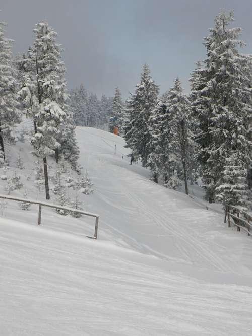 The Ski Slope Winter Mountains Skiing