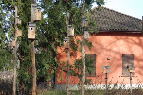 Ticino Park Nests Feeders Reserve Nest