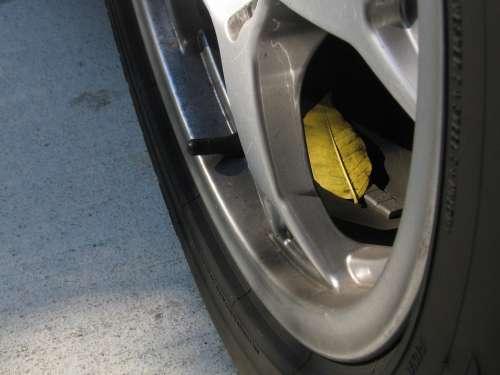 Tire Automotive Leaf Fall Maintenance Auto Wheel