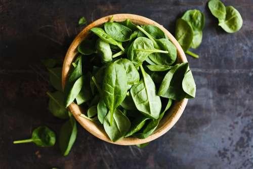 Top View Basil Herbs Bowl Closeup Vegetarianism