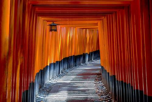 Torii Gate Architecture Culture Traditional Japan