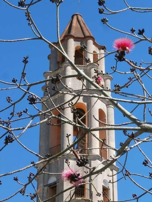 Torre De Iznaga Cuba Tower Flowers Trinidad