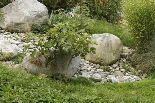 Tree Stone Meadow