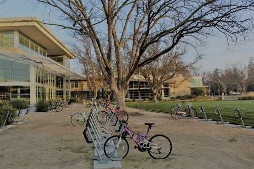 Uc Davis Bikes Campus Building College University