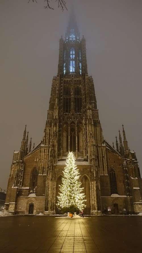 Ulm Cathedral Christmas Tree Illuminated