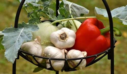Vegetables Paprika Garlic Healthy Food Vitamins