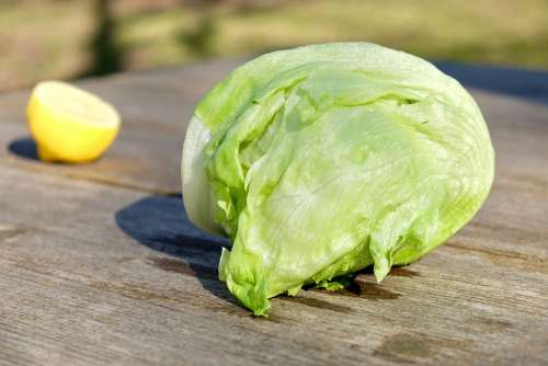 Vegetables Cooking Lettuce Lemon Outdoor Freshness