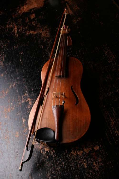 Violin Musical Instrument Music Sound