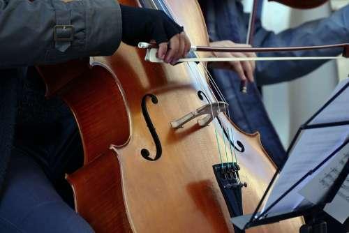 Violinist Cellist Artist Street Musician Violin