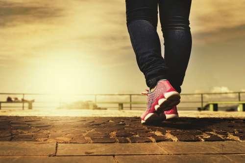 Walk Path Walking Feet Trail Shoes Sport Legs