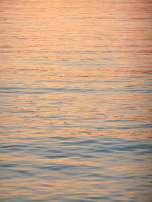 Water Surface Sea Evening
