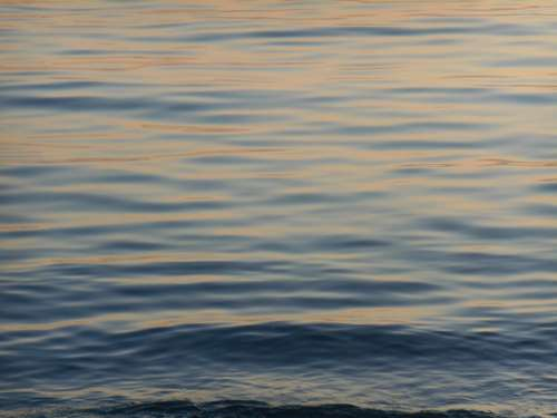 Water Surface Sea Level Background Evening A Quiet