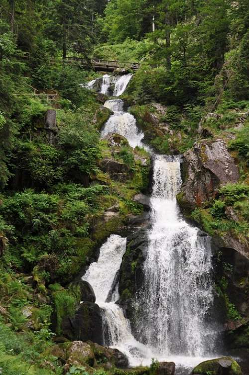 Waterfall Water Triberg Black Forest