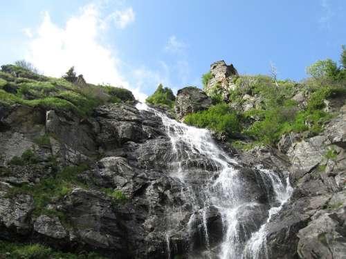 Waterfall Nature Creek Cascade Scenic Summer