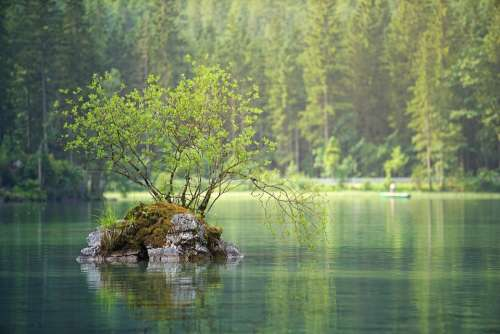 Waters Nature Lake River Water Landscape Forest