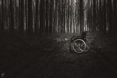 Wheelchair Lonely Physical Hospital Land Care