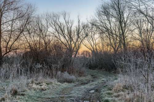 Winter River Nature Trees Outdoors Travel Sunset